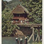 709 Jungbauernhof Walke um 1950