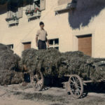 648 Einbringen der Heuernte durch Walkensteinwirt Richard Bonath um 1960