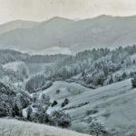 667 Noch offene Landschaft auf dem Wölflehof um 1950