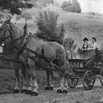 679 Pferdekutsche um 1940 (Bild auf Schornhof)