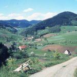 018 Blick vom Landeckweg zum Steigbauernhof um 1970