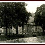 043 Wolftalstraße mit Kastanienbäumen beim Schulhaus um 1940