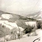 107 Blick vom Wölflehof auf den Karleshof und den Bächlehof im Frohnbach um 1950