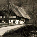 1174 Lorenzenhof um 1950