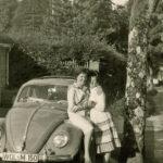 263 Käfer von Alois Schoch