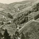 317 Blick in den Frohnbach um 1955