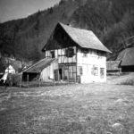 338 Wohnhaus der Familie Griesbaum auf der Allmend