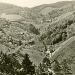 349 Blick in den Frohnbach