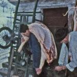 350 Hausschlachtung im Rankach