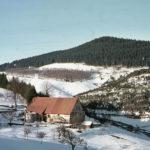 353 Schremppehof auf dem Schwarzenbruch um 1960