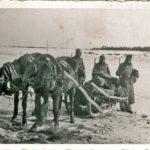 359 Krieg in Russland 1942 mit Soldat Franz Bächle