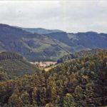 418 Foto von Paul Schuler um 1960 von oberhalb des Bergbauernhofes im Frohnbach