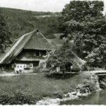 443 Jungbauernhof an der Walke um 1950