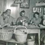 477 Apfelschnitze werden zum Dörrenvorbereitet - in der hinteren Grangat um 1940