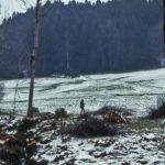 533 Wellemacher im Mitteltal