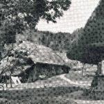 538 Ak Jungbauernhof an der Walke um 1950