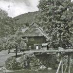 627 Ak Jungbauernhof (Echle) an der Walke um 1950
